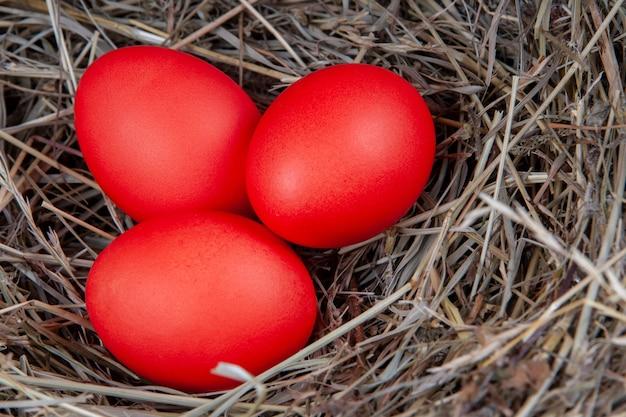 Rote eier im heu. mock up, konzept ostern.