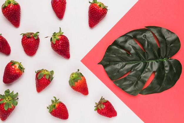 Rote erdbeeren und großes blatt auf rosa und weißem mehrfarbigem hintergrund