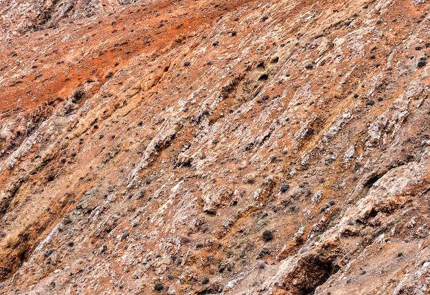 Rote felsige oberfläche mit vielen büschen - ideal für einen kühlen hintergrund