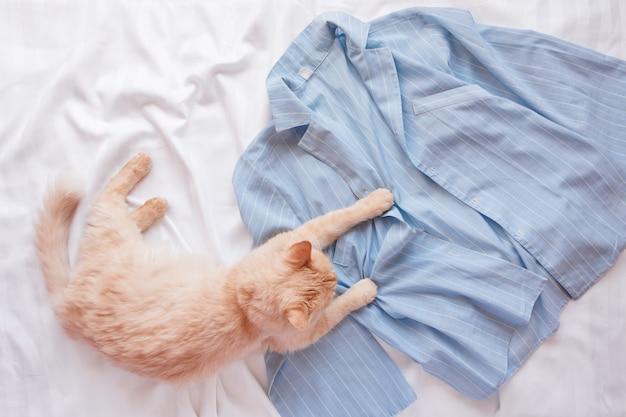 Rote flauschige katze, die auf bett mit pyjamas liegt.