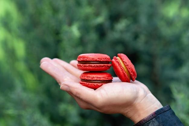 Rote französische makronenplätzchen aus haselnussmehl mit gesalzenem karamell