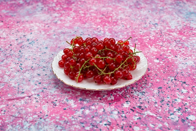Rote frische preiselbeeren der vorderansicht innerhalb der weißen platte auf lila