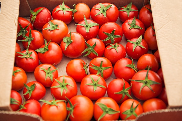 Rote frische tomaten versammelten sich in einem cardboaard kasten für verkauf.