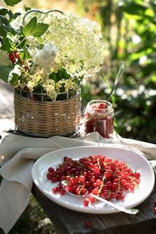 Rote johannisbeeren auf einem weißen teller auf einem holzbrett im garten in der sonne.