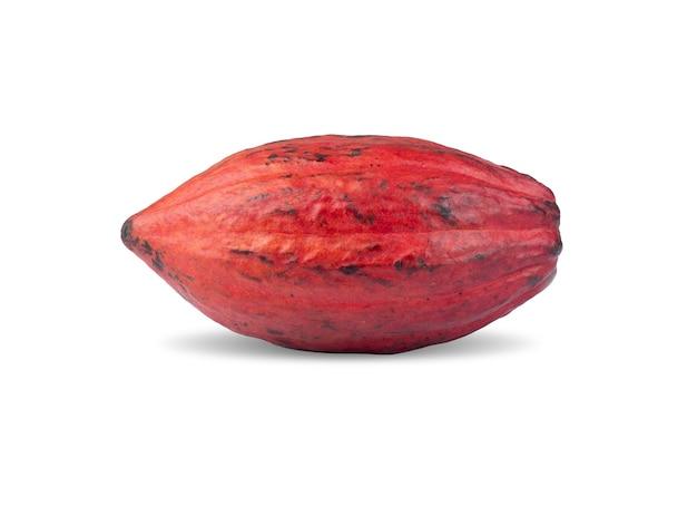 Rote kakaofrucht lokalisiert über weißem hintergrund.