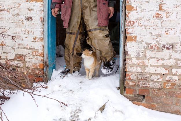 Rote katze geht in den winter im schnee auf der straße