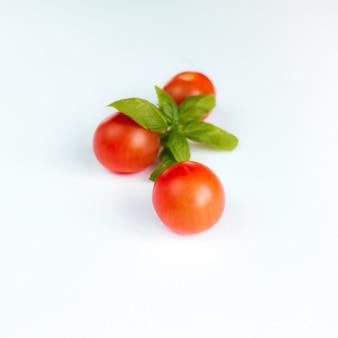 Rote kirschtomaten mit grünem basilikum auf weißem hintergrund. hochwertiges foto