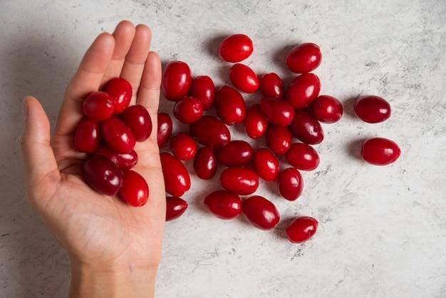 Rote kornelkirschen in der hand eines mannes.