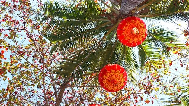 Rote laternen beim chinesischen neujahrsevent auf hawaii mit kokospalmen