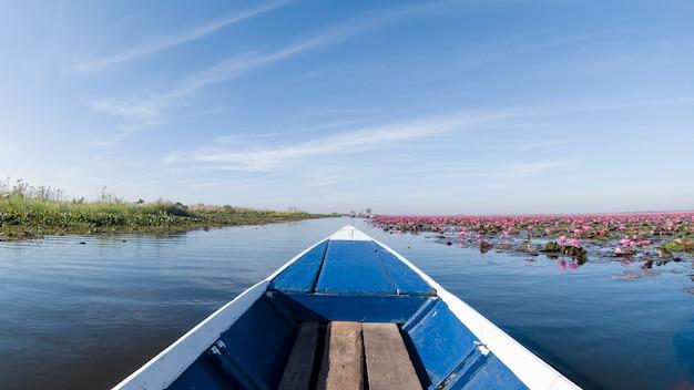 Rote lotosblumenblüte in der ungesehenen reise des sees mit dem boot udonthani thailand