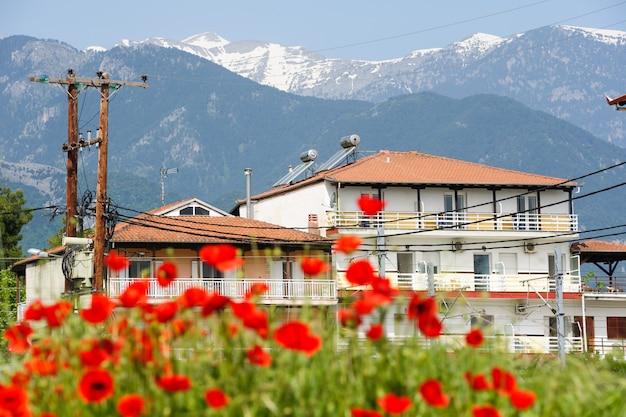 Rote mohnblumen am fuße des olymp