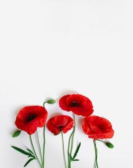 Rote mohnblumen auf einer weißen hintergrundpostkarte im stil des minimalismus platz für textnahaufnahme