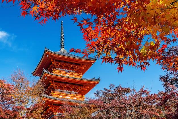Rote pagode und ahornbaum im herbst