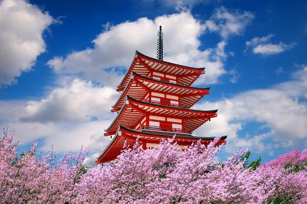 Rote pagode und kirschblüten im frühjahr, japan.