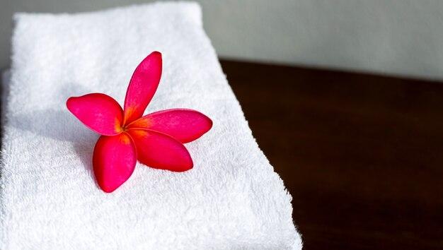 Rote plumeria auf weißem handtuch