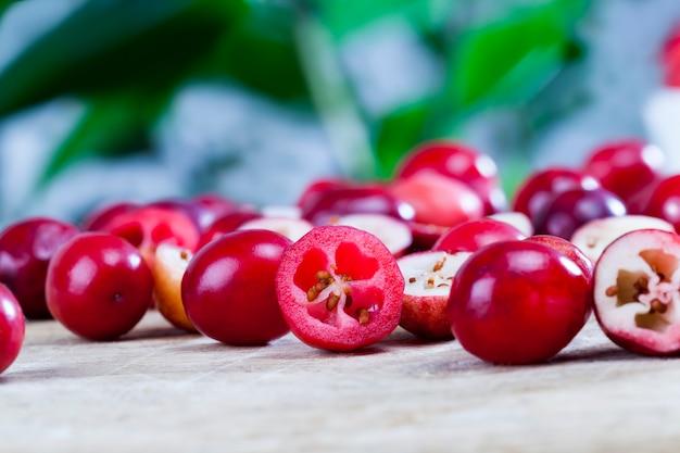 Rote preiselbeeren