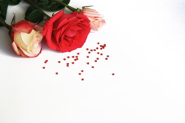 Rote, rosa und weiß-rosa rosen und kleine perlen auf weißer draufsicht