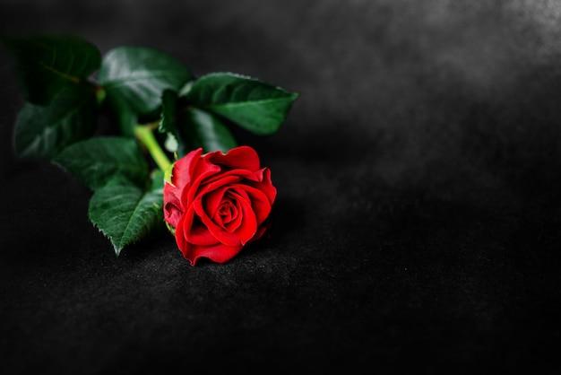 Rote rose auf schwarzem tisch