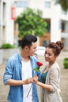 Rote rose für ein romantisches date