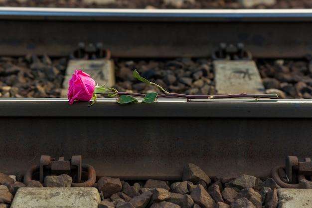 Rote rose liegt auf den schienen der bahngleise.