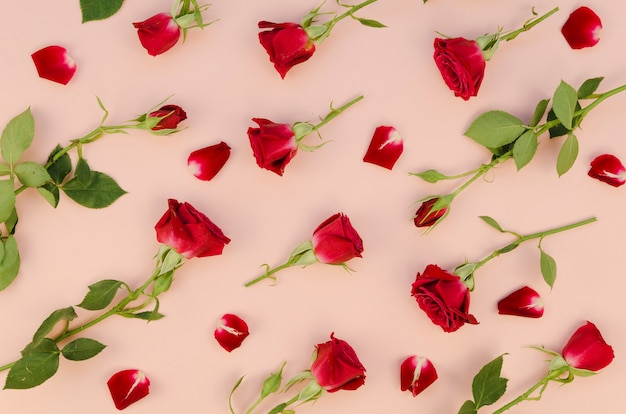 Rote rosen anordnung flach zu legen