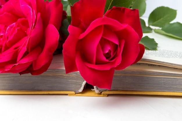 Rote rosen auf einem offenen buch auf einer hellen steinoberfläche. das konzept der romantischen literatur. flache lage, draufsicht