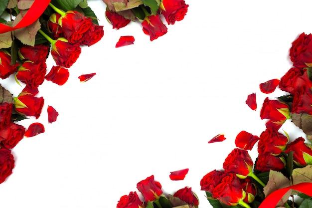 Rote rosen auf einem weißen hintergrund. blumenrahmen