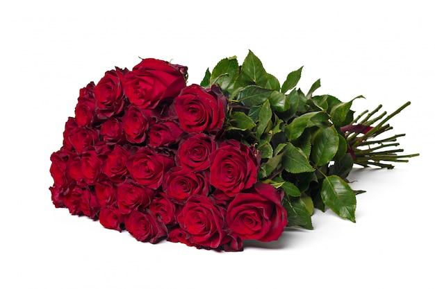 Rote rosen auf einem weißen hintergrund.
