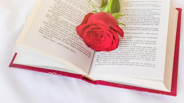 Rote rosenblume auf buch