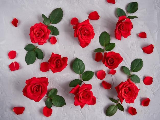 Rote rosenblumen, blütenblätter, blätter auf einem grauen texturhintergrund
