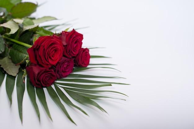 Rote schöne blumen getrennt auf weiß. strauß rosen .rote rose