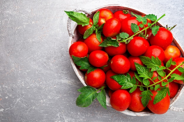 Rote tomate im grauen korb auf grauer oberfläche,