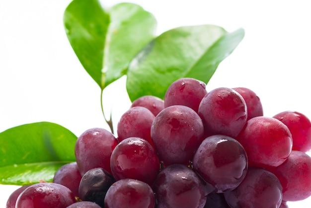 Rote trauben auf weißem acryl.