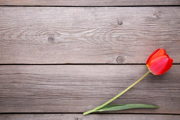 Rote tulpe auf einem grauen hölzernen.