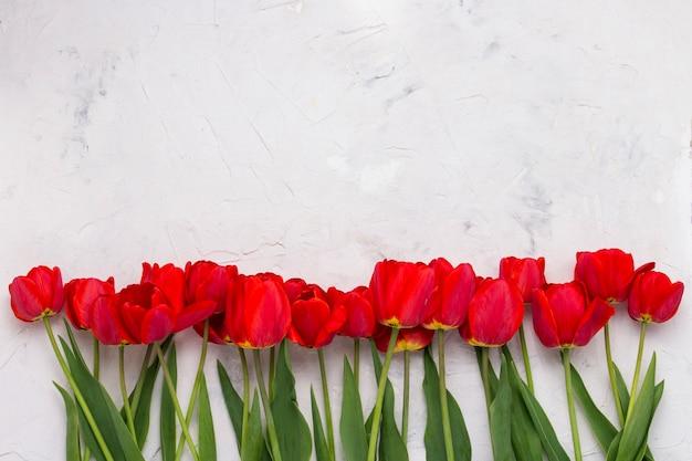 Rote tulpen in einer linie am unteren rand des bildes auf einer hellen steinoberfläche ausgekleidet. flachgelegt, draufsicht