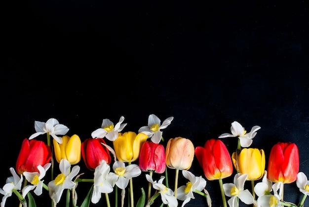 Rote tulpen und narzissen in der reihe auf dem schwarzen