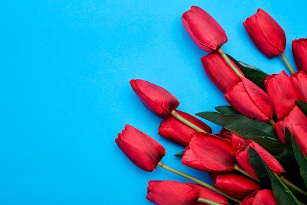 Rote tulpenblumen auf blauem hintergrund