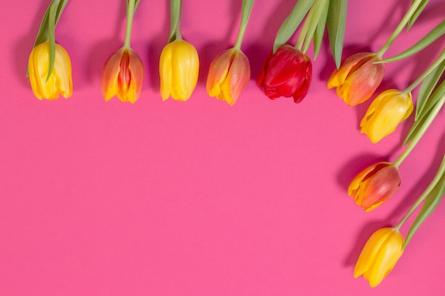 Rote und gelbe tulpen auf rosa oberfläche