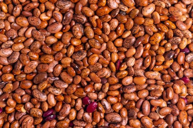 Rote und lila rohe bohnen für vegetarischen lebensmittelhintergrund