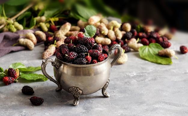 Rote und schwarze maulbeere oder morus, eine gattung von blütenpflanzen in der familie moraceae