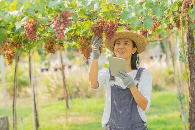 Rote weinfarm. frau trägt overalls und einen strohhut auf dem bauernhof