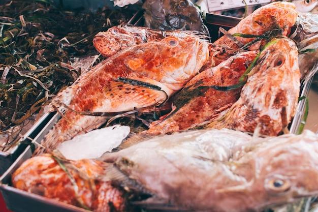 Roter fisch mit seegras am fischmarkt