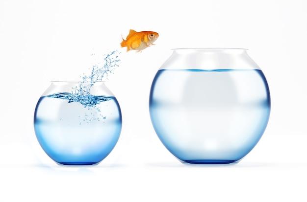 Roter fisch springt von einer cruet zu einer größeren. konzept der flucht aus der menge