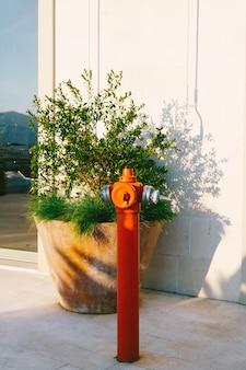 Roter hoher hydrant auf der straße