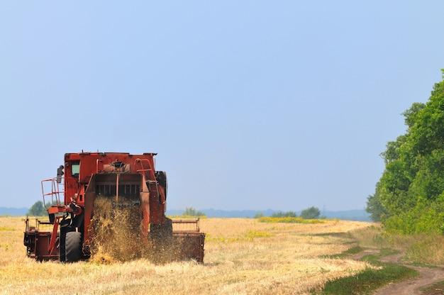 Roter mähdrescher, der im weizenfeld am sonnigen klaren sommertag arbeitet. landwirtschaftlicher natürlicher hintergrund und tapete