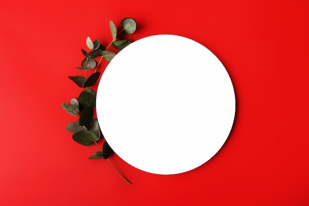 Roter minimaler hintergrund mit isoliertem platz für textfresh eukalyptuszweig in der nähe