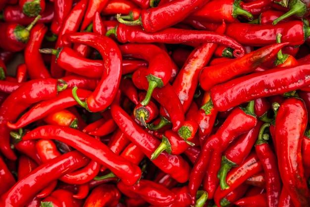 Roter pfeffer. bündel reife große rote pfeffer an einem straßenmarkt.