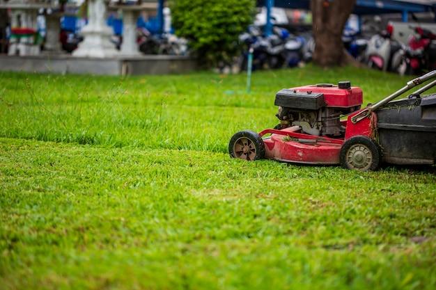 Roter rasenmäher, der gras schneidet. gartenkonzept hintergrund