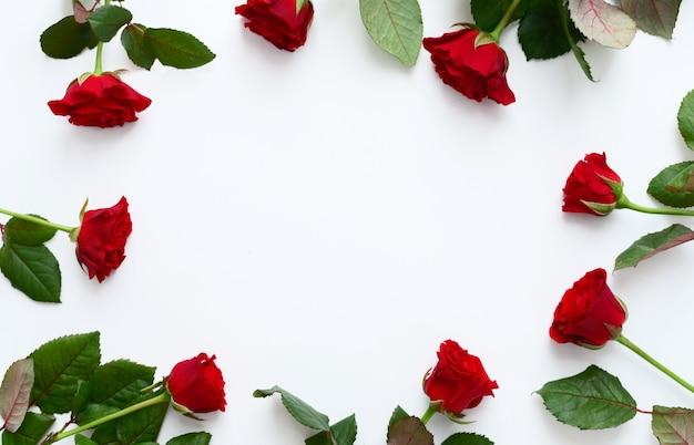 Roter rosenrahmen auf weißem hintergrund, kopienraum.