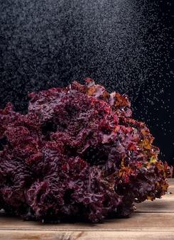 Roter salat an bord